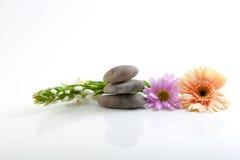 Bloemen en stenen - kuuroordthema stock fotografie