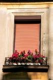 Bloemen en venster met blind royalty-vrije stock afbeeldingen