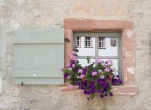 Bloemen en Vensterdozen Stock Afbeelding