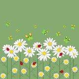 Bloemen en vlinders op een rij Stock Afbeeldingen