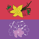 Bloemen en vruchten Stock Foto's