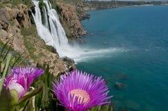 Bloemen en waterval royalty-vrije stock afbeeldingen