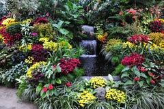Bloemen en waterval Stock Foto