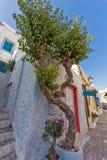 Bloemen en witte huizen in oude stad van Ermopoli, Syros, Griekenland Stock Foto's