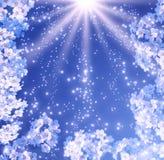 Bloemen en zonnestralen vector illustratie