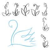 Bloemen en zwaan Stock Foto's