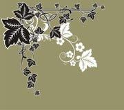 Bloemenkader royalty-vrije stock afbeeldingen