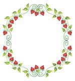 Bloemen frame Royalty-vrije Stock Afbeelding