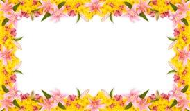 Bloemen Frame Stock Foto