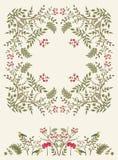 Bloemen frame Royalty-vrije Stock Afbeeldingen