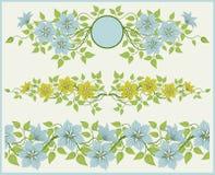 Bloemen frame en grens. Royalty-vrije Stock Afbeelding