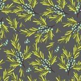Bloemen, fruit en bessen kleurrijk naadloos patroon Stock Afbeeldingen