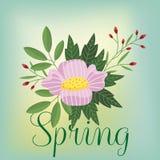 Bloemen geïsoleerde vector Stock Foto