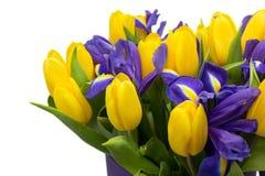 Bloemen Geel tulp en irisboeket Royalty-vrije Stock Foto