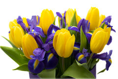 Bloemen Geel tulp en irisboeket Royalty-vrije Stock Foto's