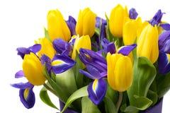 Bloemen Geel tulp en irisboeket Stock Afbeelding