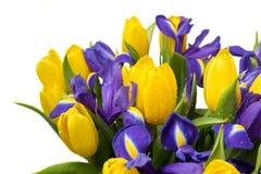 Bloemen Geel tulp en irisboeket Stock Foto's