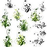 Bloemen geplaatste decoratie Stock Illustratie