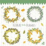 Bloemen geplaatste frames Stock Afbeelding