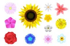 Bloemen geplaatste vormen vector illustratie
