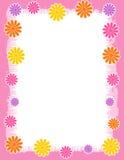Bloemen Grens - de lente en de zomer Stock Afbeeldingen