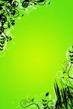 Bloemen groene achtergrond Royalty-vrije Stock Fotografie