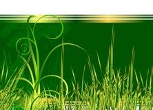Bloemen groene achtergrond met gras stock illustratie