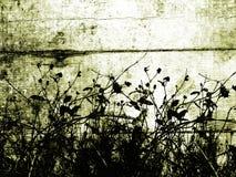 Bloemen grunge Royalty-vrije Stock Foto's