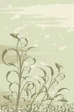 Bloemen grungeachtergrond Stock Foto