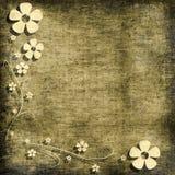 Bloemen grungeachtergrond Stock Afbeeldingen