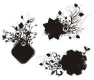 Bloemen grungeframe reeks Stock Afbeeldingen