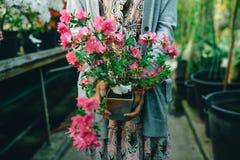 Bloemen in handen Royalty-vrije Stock Foto