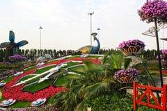 Bloemen in het mirakeltuin van Doubai stock afbeelding