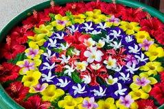 Bloemen in het water Royalty-vrije Stock Foto