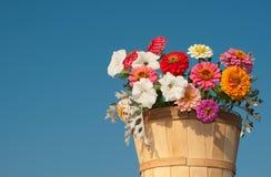 Bloemen in houten emmer Royalty-vrije Stock Foto's