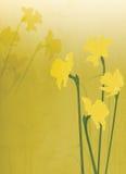 Bloemen Illustratie Als achtergrond stock illustratie
