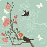 Bloemen illustratie als achtergrond Stock Foto
