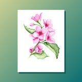 Bloemen kaart vector illustratie