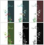 Bloemen kaarten Stock Foto's