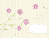 Bloemen kaartontwerp Stock Foto