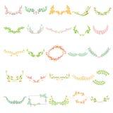Bloemen Kalligrafisch Ontwerp Stock Foto's