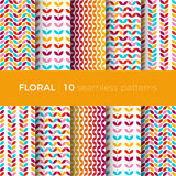 Bloemen kleurrijke patronen Stock Afbeeldingen