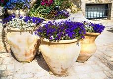Bloemen in kruiken royalty-vrije stock afbeeldingen