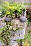 Bloemen in laarzen Stock Foto's