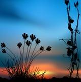 Bloemen landschap 04 stock illustratie
