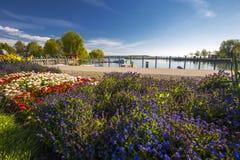 Bloemen langs haven in het Kreuzlingen-stadscentrum stock afbeelding