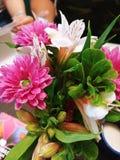 Bloemen in liefde stock afbeeldingen