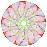 Bloemen mandala Stock Afbeelding