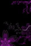 Bloemen met gradiënt Stock Foto's