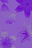 Bloemen met gradiënt Royalty-vrije Stock Afbeeldingen